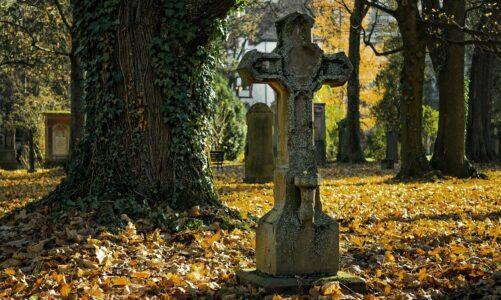 Koronavirus má v Polsku oběť mezi biskupy. Nákaza se prokázala u čtrnácti dalších