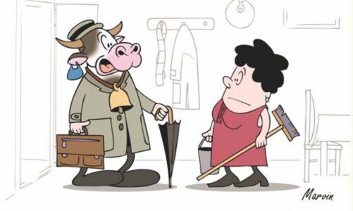 Boromejky spustily internetovou aukci kreslených vtipů tvůrčího dua MARVIN. Výtěžek podpoří Domov sv. Karla Boromejského