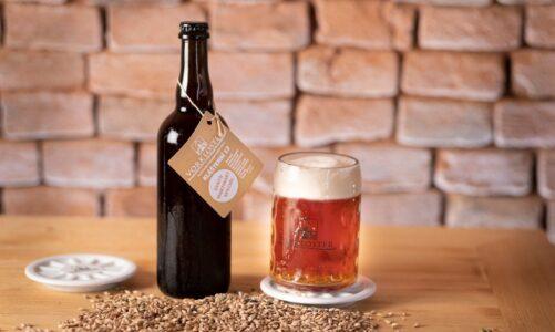 Klášterní pivovar Vorkloster v Předklášteří uvařil Svatomartinský speciál. Vozí jej až do Brna