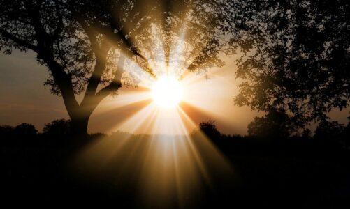 Bylo světlo pravé, které osvěcuje každého člověka