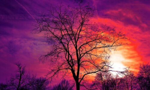 Lid, který žil v temnotě, uviděl veliké světlo
